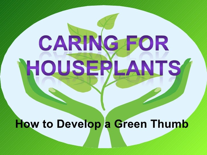 How to Develop a Green Thumb
