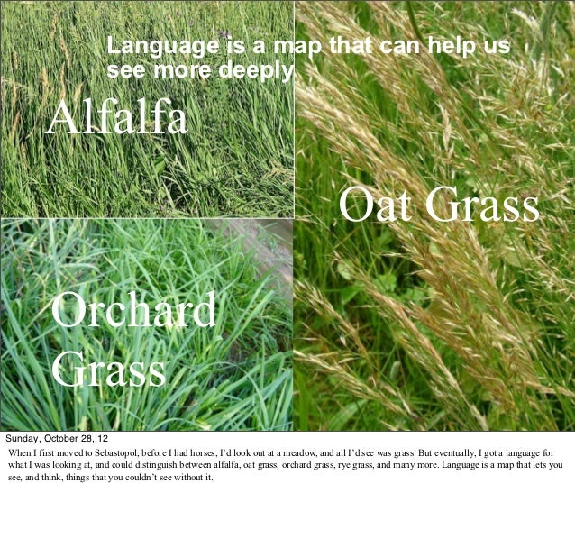 Language is a Map (pdf with notes) Slide 2