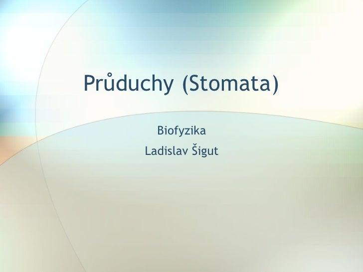 Průduchy (Stomata) Biofyzika Ladislav Šigut