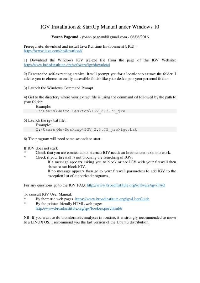 IGV installation & start up manual under windows 10 english version