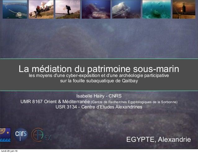 La médiation du patrimoine sous-marin les moyens d'une cyber-exposition et d'une archéologie participative sur la fouille ...