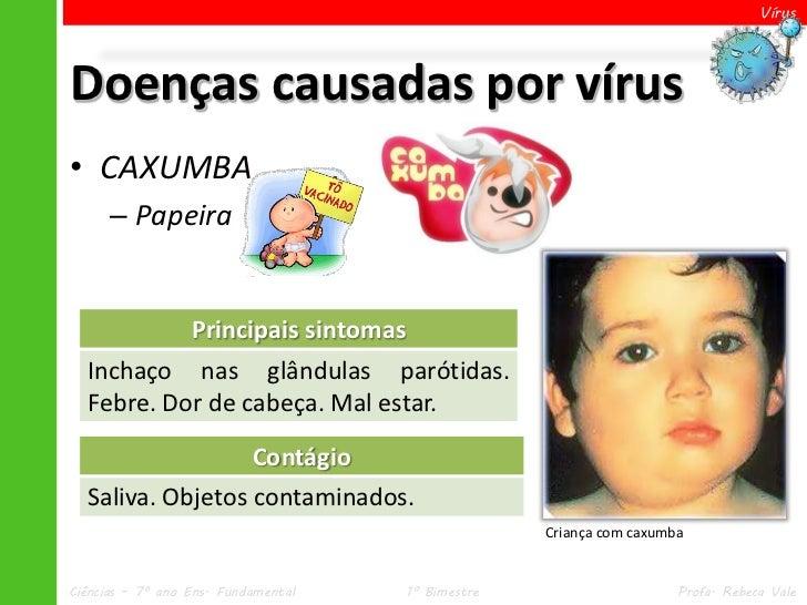 VírusDoenças causadas por vírus• CAXUMBA      – Papeira                  Principais sintomas  Inchaço nas glândulas paróti...