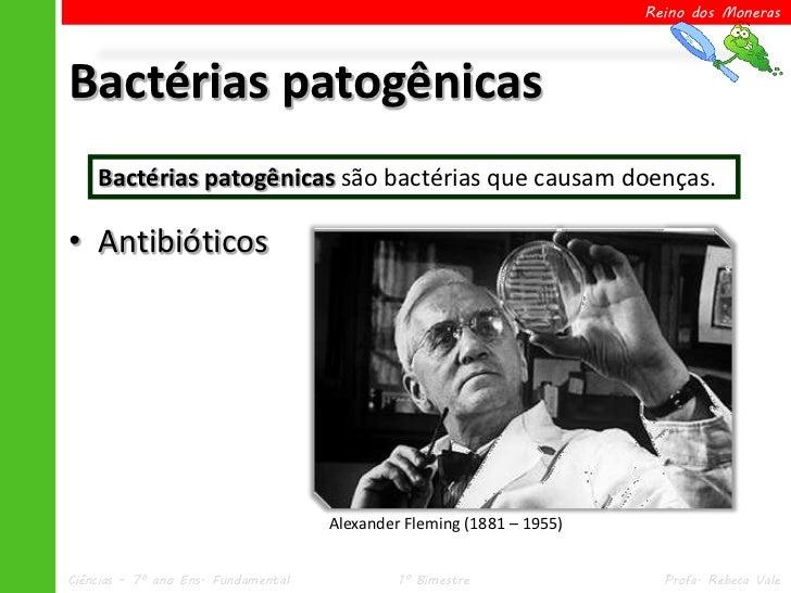 Reino dos MonerasBactérias patogênicas    Bactérias patogênicas são bactérias que causam doenças.• Antibióticos           ...