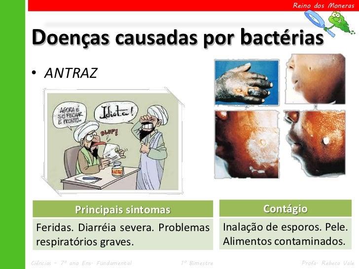 Reino dos MonerasDoenças causadas por bactérias• ANTRAZ               Principais sintomas                         Contágio...