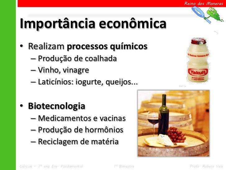 Reino dos MonerasImportância econômica• Realizam processos químicos      – Produção de coalhada      – Vinho, vinagre     ...