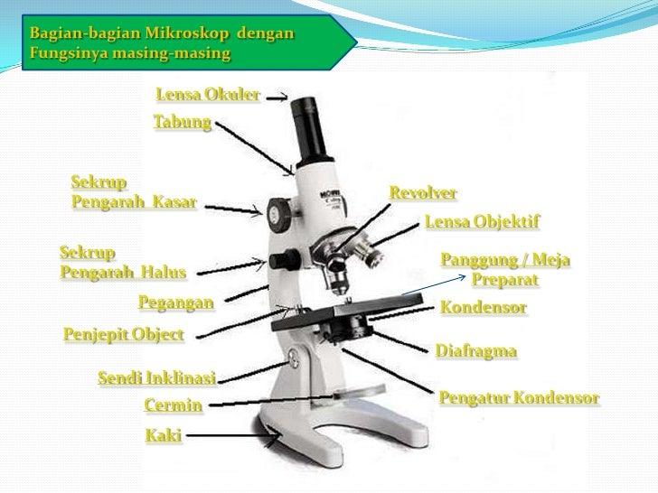 I ia. mikroskop (tugas 1 presentation)_basrib.biologi