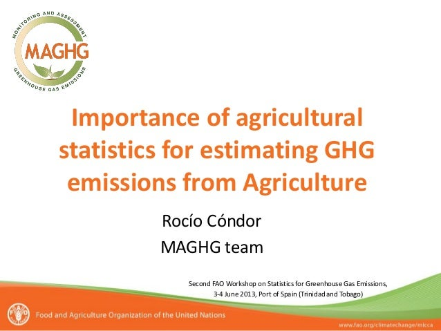 Second FAO Workshop on Statistics for Greenhouse Gas Emissions, 3-4 June 2013, Port of Spain (Trinidad and Tobago) Importa...
