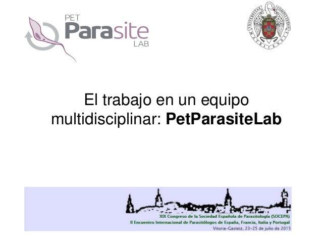 El trabajo en un equipo multidisciplinar: PetParasiteLab