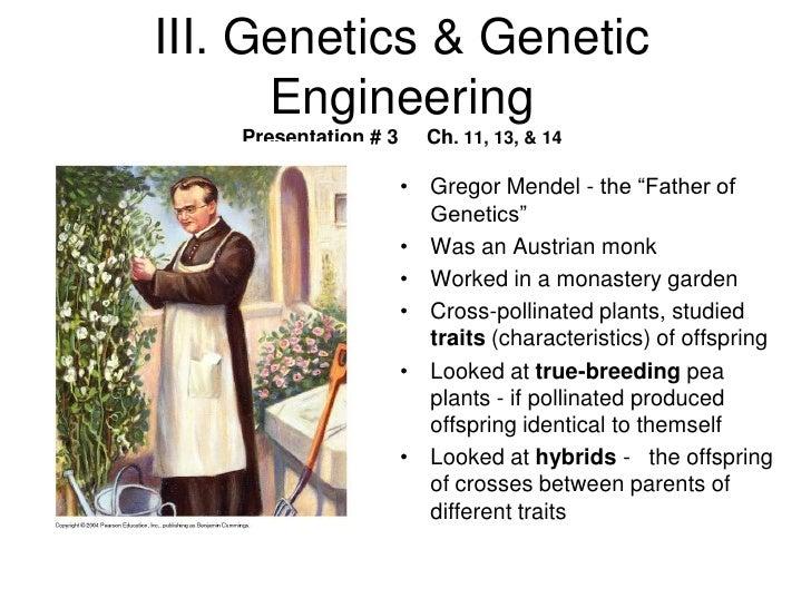 III. Genetics & Genetic      Engineering    Presentation # 3     Ch. 11, 13, & 14                       • Gregor Mendel - ...