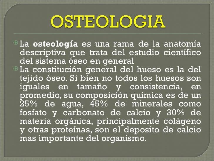 <ul><li>La  osteología  es una rama de la anatomía descriptiva que trata del estudio científico del sistema óseo en genera...