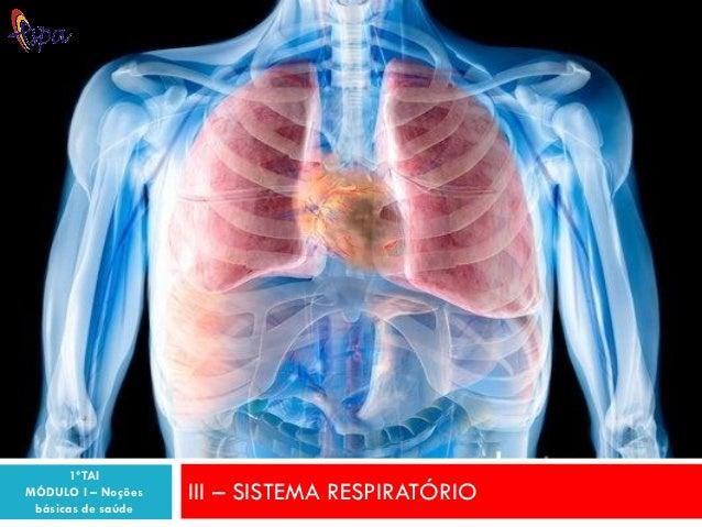 1ºTAIMÓDULO I – Noções   III – SISTEMA RESPIRATÓRIO básicas de saúde