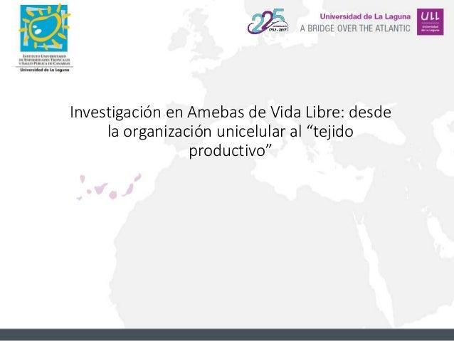 """Investigación en Amebas de Vida Libre: desde la organización unicelular al """"tejido productivo"""""""