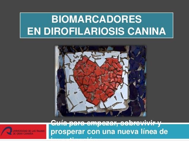 BIOMARCADORES EN DIROFILARIOSIS CANINA Guía para empezar, sobrevivir y prosperar con una nueva línea de