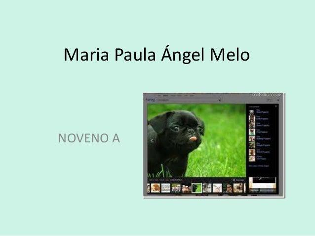 Maria Paula Ángel Melo  NOVENO A