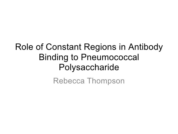 Role of Constant Regions in Antibody      Binding to Pneumococcal           Polysaccharide         Rebecca Thompson