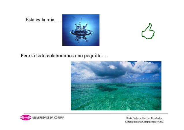 Cibervoluntaria Campus peace UOCMaría Dolores Sánchez FernándezEsta es la mía….Pero si todo colaboramos uno poquillo….