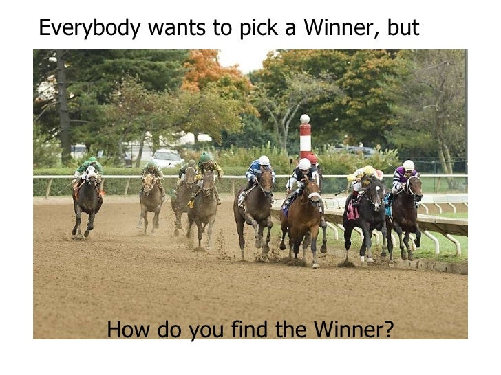 How do you find the Winner? Everybody wants to pick a Winner, but