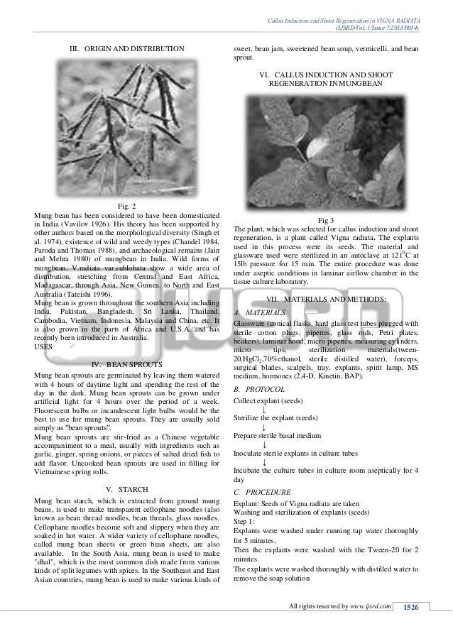 Callus Induction and Shoot Regeneration in VIGNA RADIATA