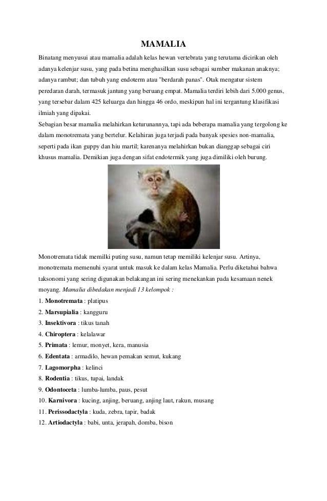 Klasifikasi Hewan Ikan Pisces Burung Aves Mamalia Amphibia Re
