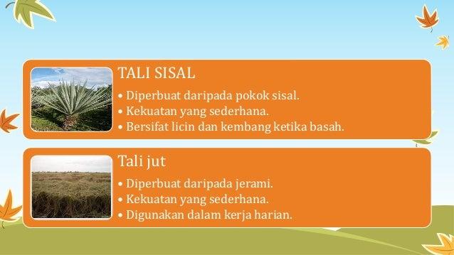 TALI SISAL • Diperbuat daripada pokok sisal. • Kekuatan yang sederhana. • Bersifat licin dan kembang ketika basah. Tali ju...