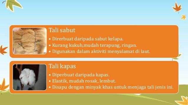 Tali sabut • Direrbuat daripada sabut kelapa. • Kurang kukuh,mudah terapung, ringan. • Digunakan dalam aktiviti menyalamat...