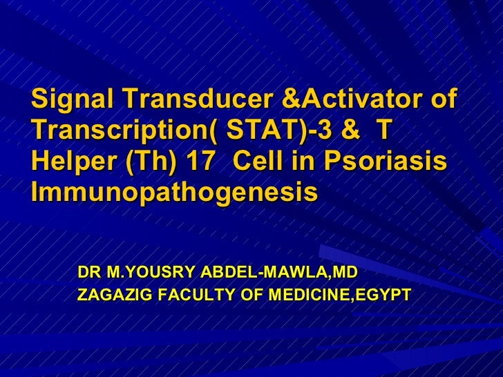 Signal Transducer &Activator of Transcription( STAT)-3 &  T  Helper (Th) 17  Cell in Psoriasis Immunopathogenesis <ul><li>...