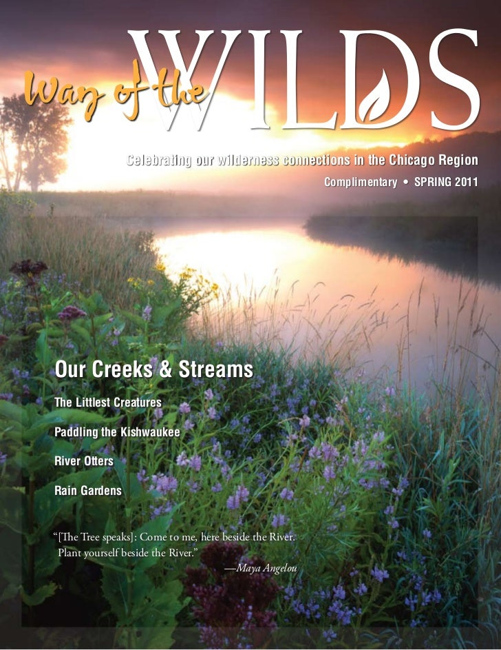 Celebrating our wilderness connections in the Chicago Region                                                         Compl...