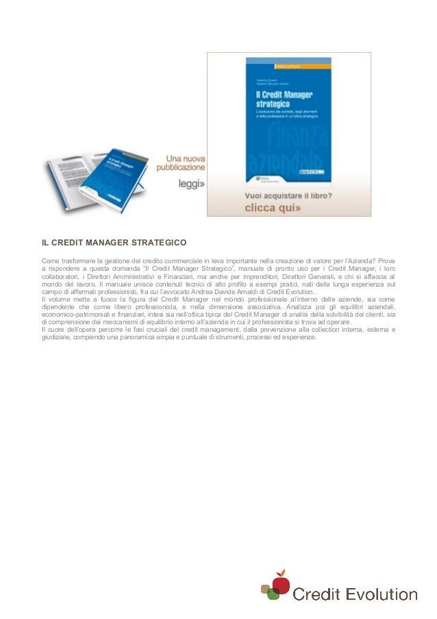 IL CREDIT MANAGER STRATEGICO Come trasformare la gestione del credito commerciale in leva importante nella creazione di va...