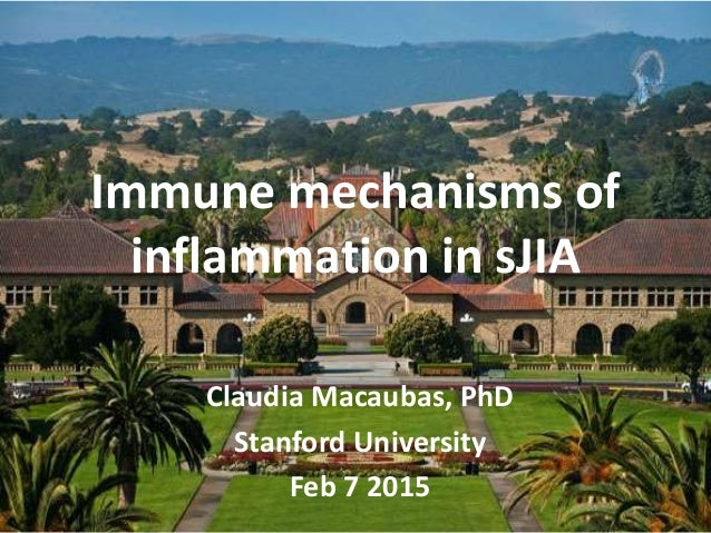 Immune mechanisms of inflammation in sJIA Claudia Macaubas, PhD Stanford University Feb 7 2015