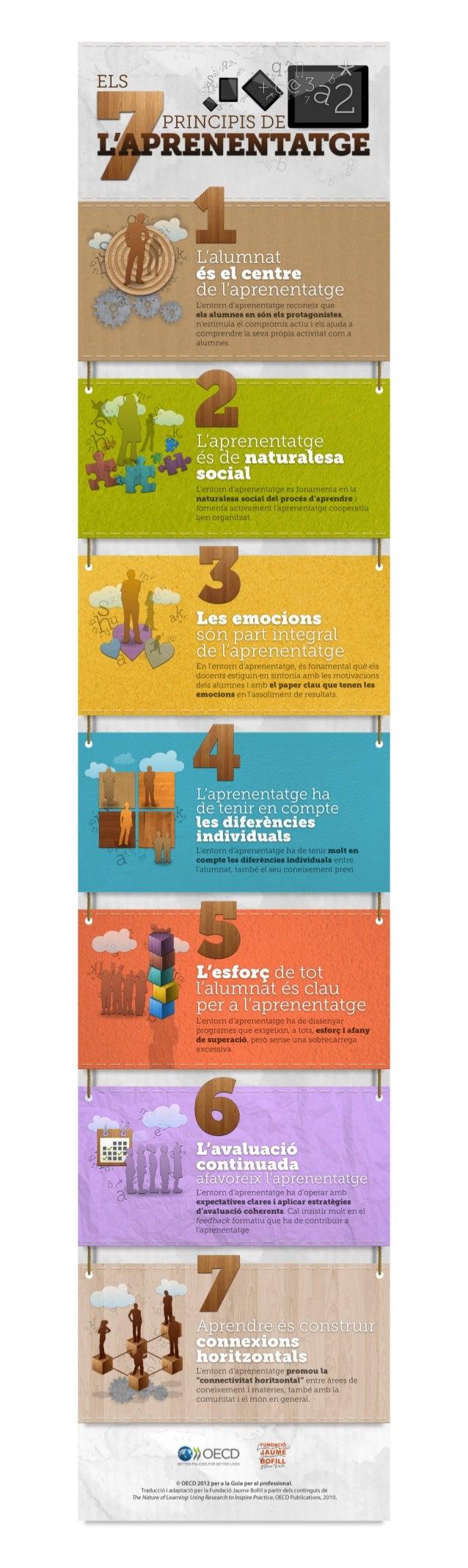 Els 7 principis de l'aprenentatge
