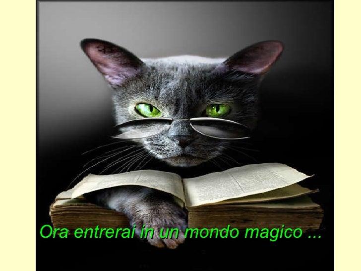 Ora entrerai in un mondo magico ...