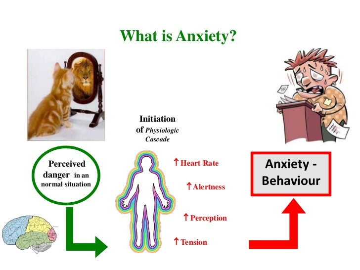treatments of anxiety from different schools Read on to learn how anxiety is different from stress—and what might cause anxiety in kids with learning and attention issues  as they go through grade school .