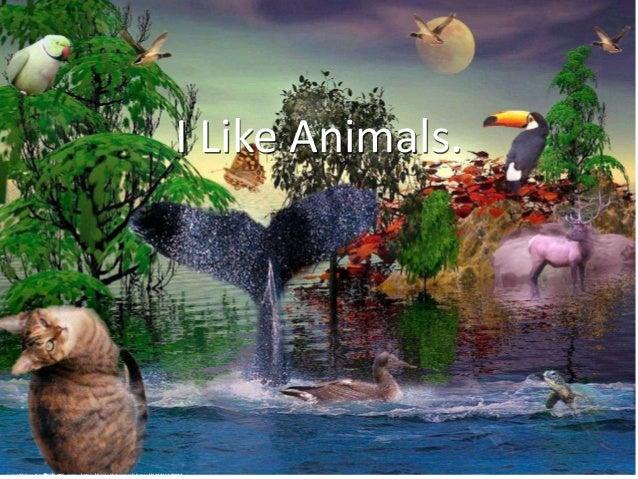 I Like Animals. cc: Chrismatos ♥90% OFF, sorry - https://www.flickr.com/photos/31318464@N02