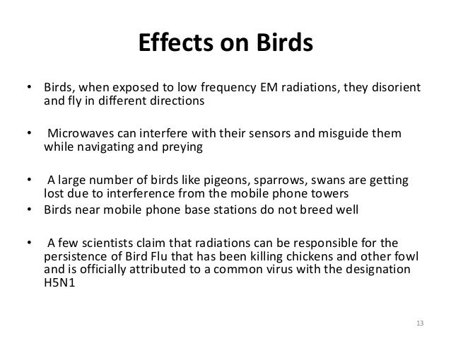 Image result for sparrow bird and mobile tower