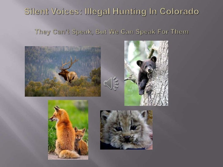    Illegal hunting is the illegal trapping, shooting, and taking of    game or fish from public or private property.   P...