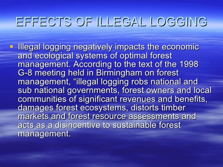asean the effects of illegal logging Logging is one of the most prominent and best-known forms of rainforest degradation and destruction despite improved logging techniques and greater international awareness and concern for the rainforests, unsustainable logging of tropical rainforests continues—much of it practiced illegally by criminal syndicates.