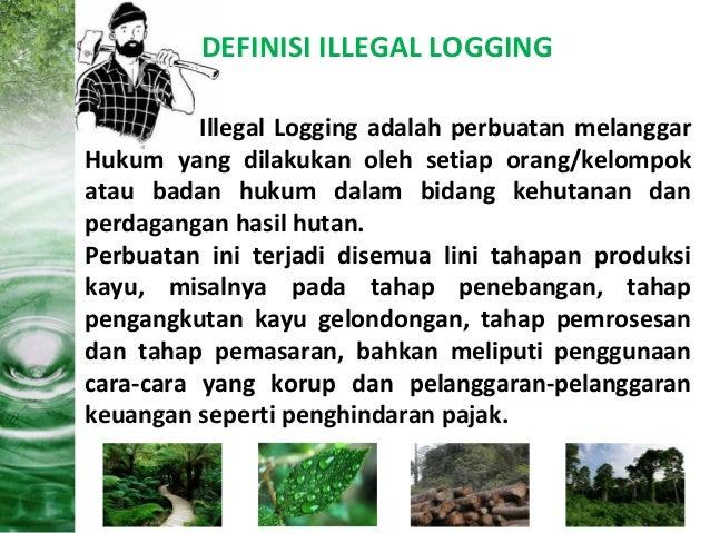 pasal hukum illegal logging oleh Pengacara Balikpapan Samarinda hp/wa tsel 0812345 3855
