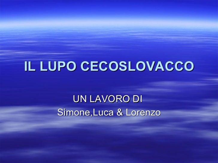 IL LUPO CECOSLOVACCO UN LAVORO DI  Simone,Luca & Lorenzo