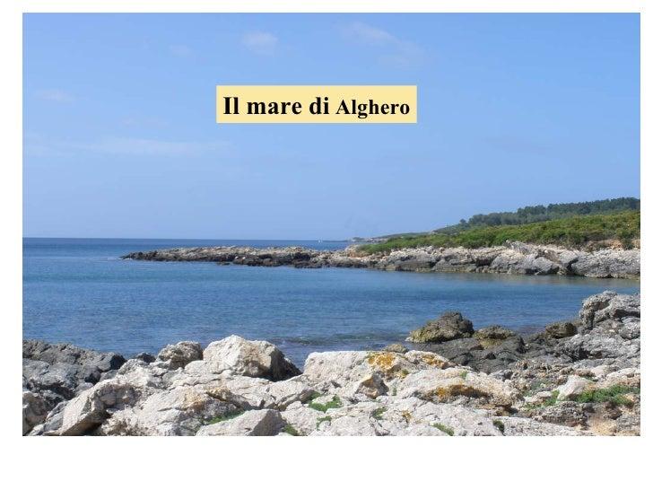 Il mare di  Alghero