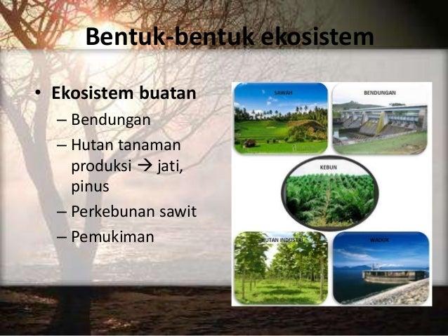 Ilmu Kealaman Dasar Ekosistem