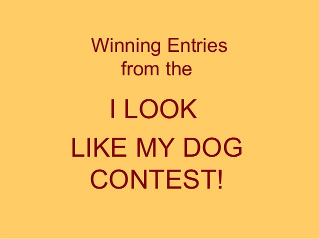 Winning Entries from the  I LOOK LIKE MY DOG CONTEST!