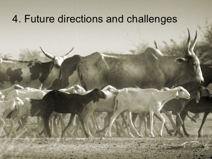 4. Future directions and challenges