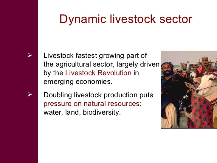 Dynamic livestock sector   <ul><li>Livestock fastest growing part of the agricultural sector, largely driven by the  L ive...