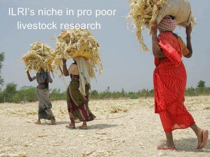 ILRI's niche in pro poor livestock research
