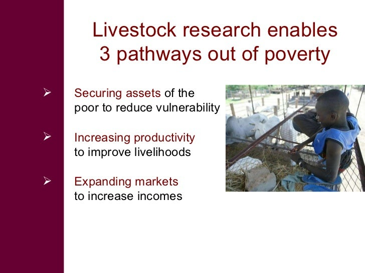 Livestock research enables 3 pathways out of poverty <ul><li>Securing assets  of the poor to reduce vulnerability </li></u...