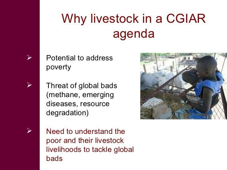 Why livestock in a CGIAR agenda <ul><li>Potential to address poverty </li></ul><ul><li>Threat of global bads (methane, eme...