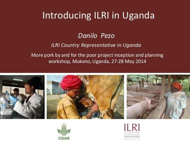 Introducing ILRI in Uganda Danilo Pezo ILRI Country Representative in Uganda More pork by and for the poor project incepti...