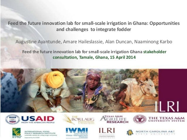 Feed the future innovation lab for small-scale irrigation in Ghana: Opportunities and challenges to integrate fodder Augus...