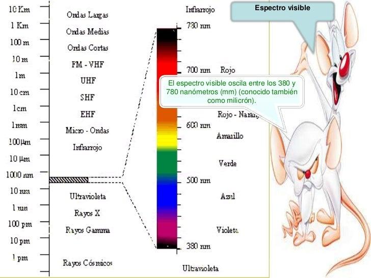 Iluminacion y ergonomia for Ergonomia en el trabajo de oficina