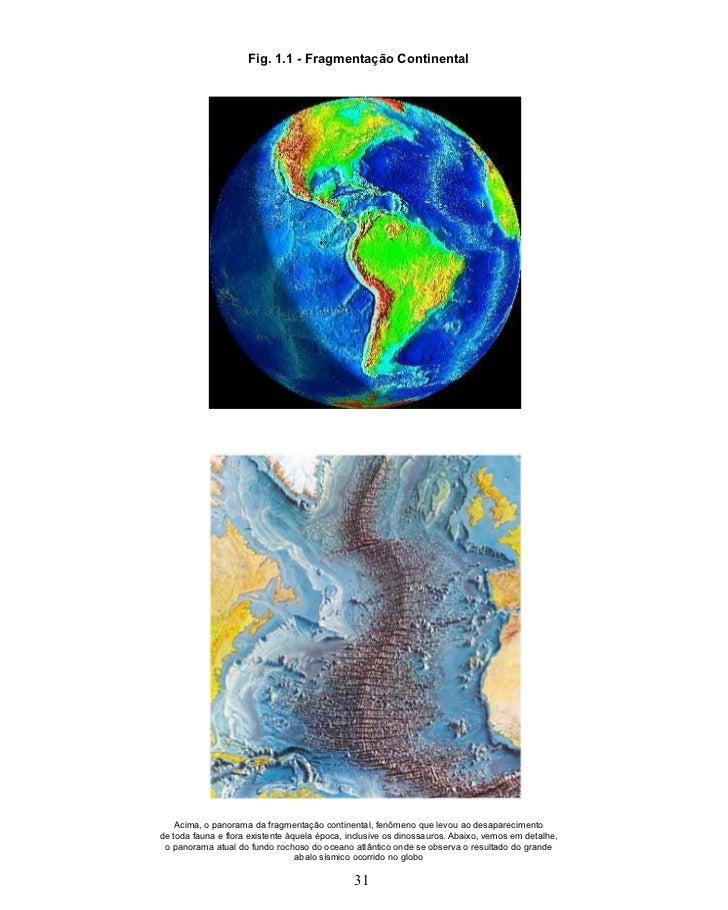 Fig. 1.1 - Fragmentação Continental    Acima, o panorama da fragmentação continental, fenômeno que levou ao desapareciment...